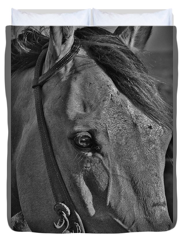 Horse Duvet Cover featuring the photograph Face by Crystal Socha
