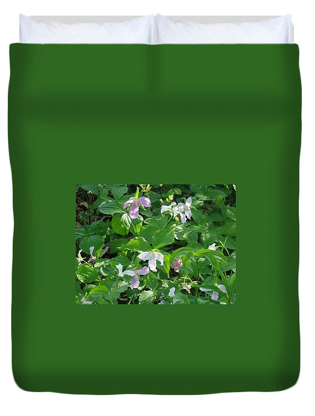 Nature Duvet Cover featuring the photograph Fading Glory by Peggy King