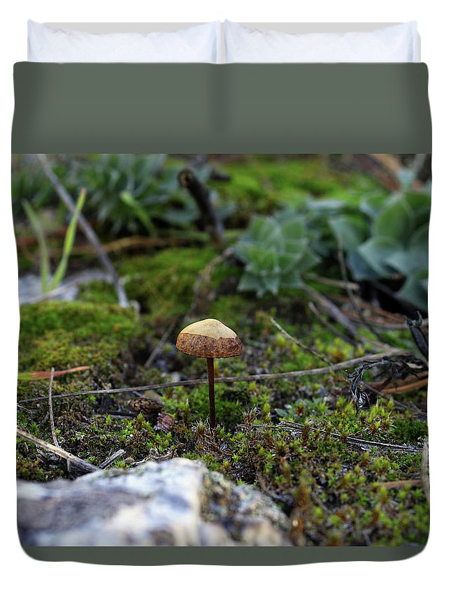 Mushroom Duvet Cover featuring the photograph Fairy Home by Gralyn Haller
