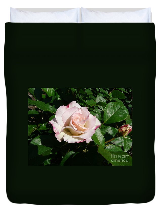 Rose Duvet Cover featuring the photograph Fait Accompli by Kendall Eutemey
