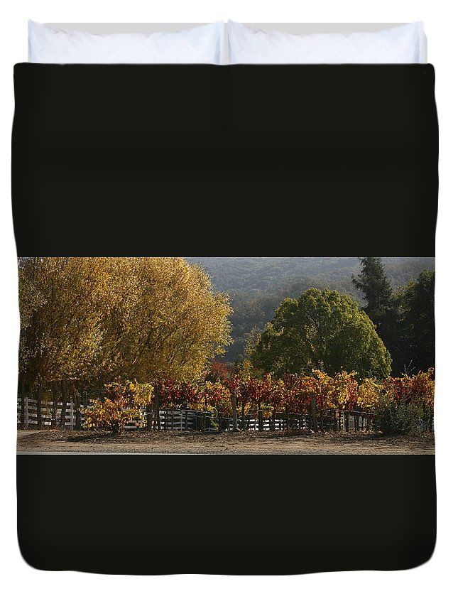 Vineyard Duvet Cover featuring the photograph Fall Vines IIi by Barbara Rawson