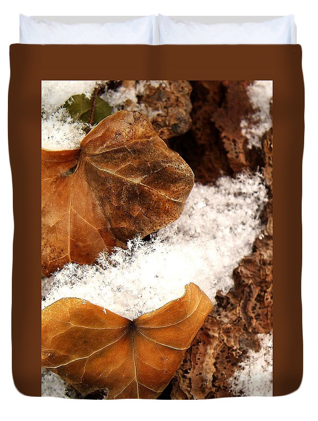 Fall Duvet Cover featuring the photograph Fall And Winter by Gaby Swanson