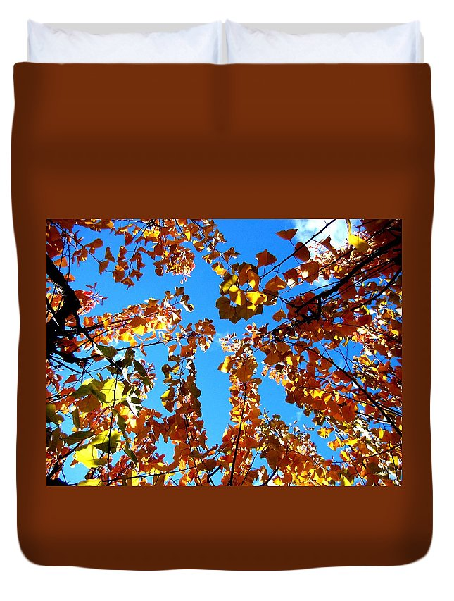 Apricot Leaves Duvet Cover featuring the photograph Fall Apricot Leaves by Will Borden