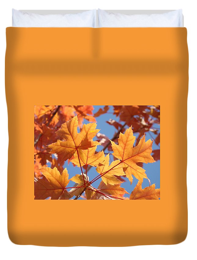 Autumn Duvet Cover featuring the photograph Fall Art Orange Autumn Leaves Blue Sky Baslee Troutman by Baslee Troutman