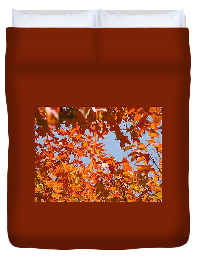 Autumn Duvet Cover featuring the photograph Fall Art Prints Orange Autumn Leaves Baslee Troutman by Baslee Troutman