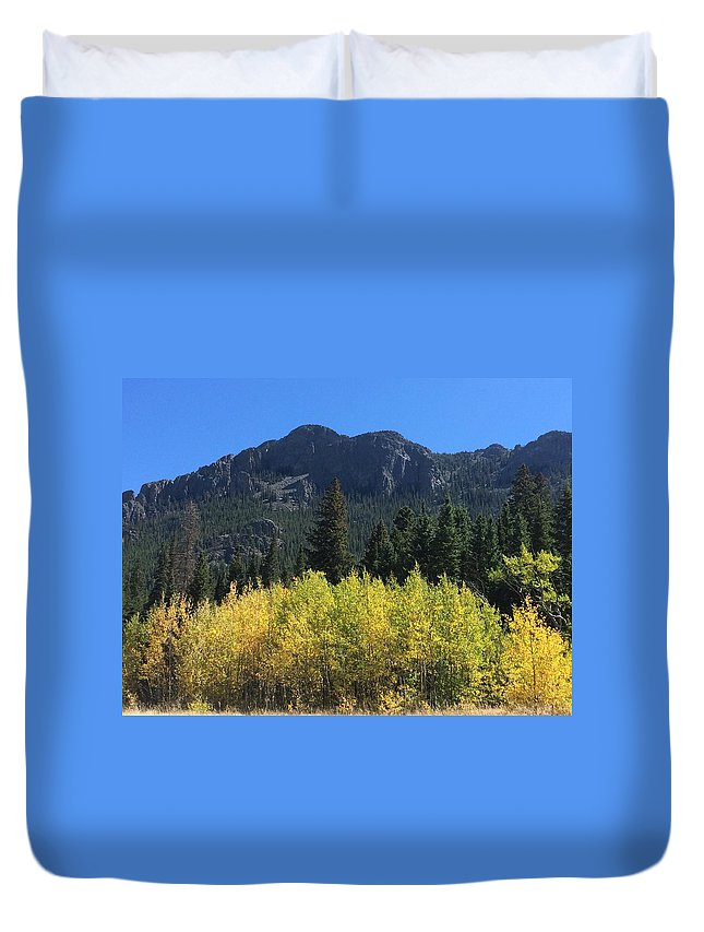 Fall Aspen Duvet Covers