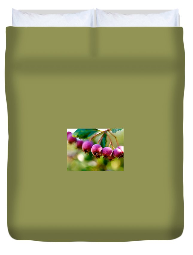 Berry Duvet Cover featuring the photograph Fall Berries by Marilyn Hunt