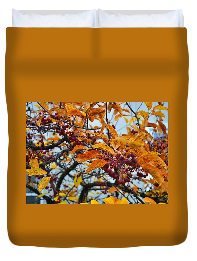 Berries Duvet Cover featuring the photograph Fall Berries by Tim Nyberg