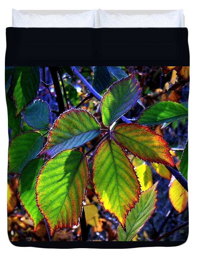 Fall Duvet Cover featuring the photograph Fall Blackberry by Will Borden