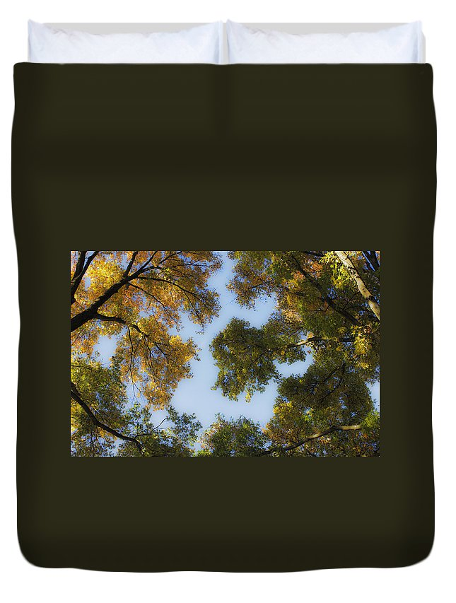 Fall Duvet Cover featuring the photograph Fall Canopy In Virginia by Teresa Mucha