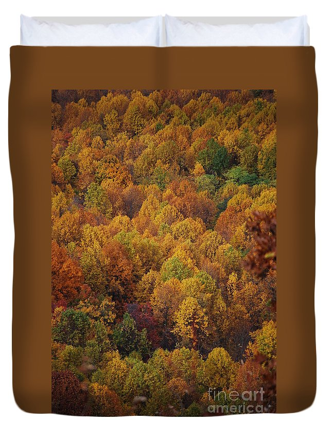 Fall Duvet Cover featuring the photograph Fall Cluster by Eric Liller