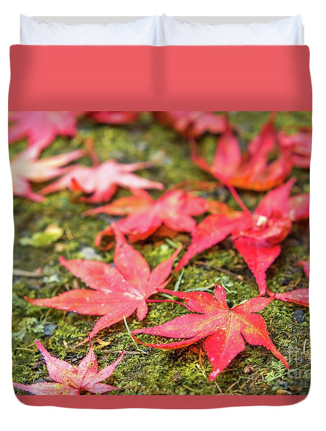 Asia Duvet Cover featuring the photograph Fall Color Maple Leaves At The Forest In Nikko, Tochigi, Japan by Eiko Tsuchiya