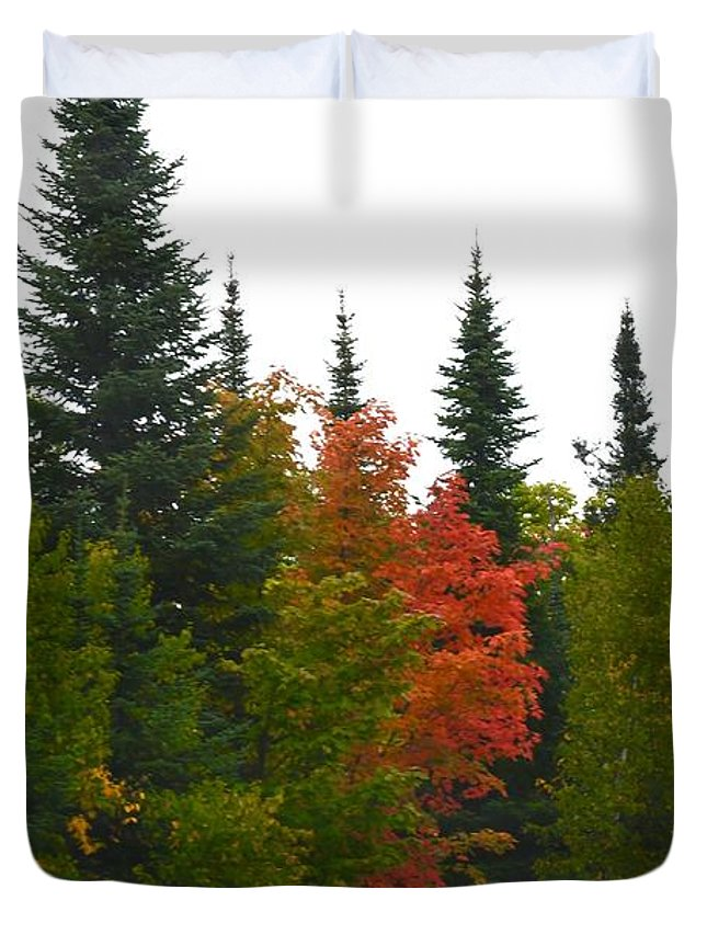 Color Duvet Cover featuring the photograph Fall Colors Are Starting by Hella Buchheim