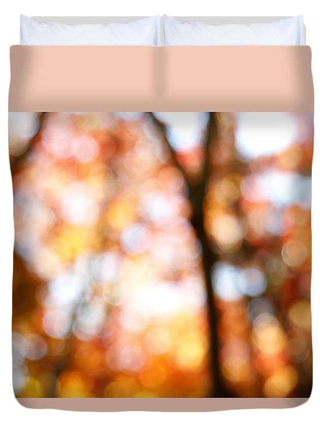 Abstract Duvet Cover featuring the photograph Fall Colors by Les Cunliffe