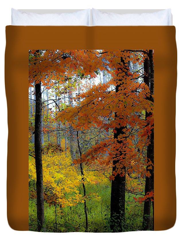 Fall Duvet Cover featuring the digital art Fall Colors Watercolor by Teresa Mucha
