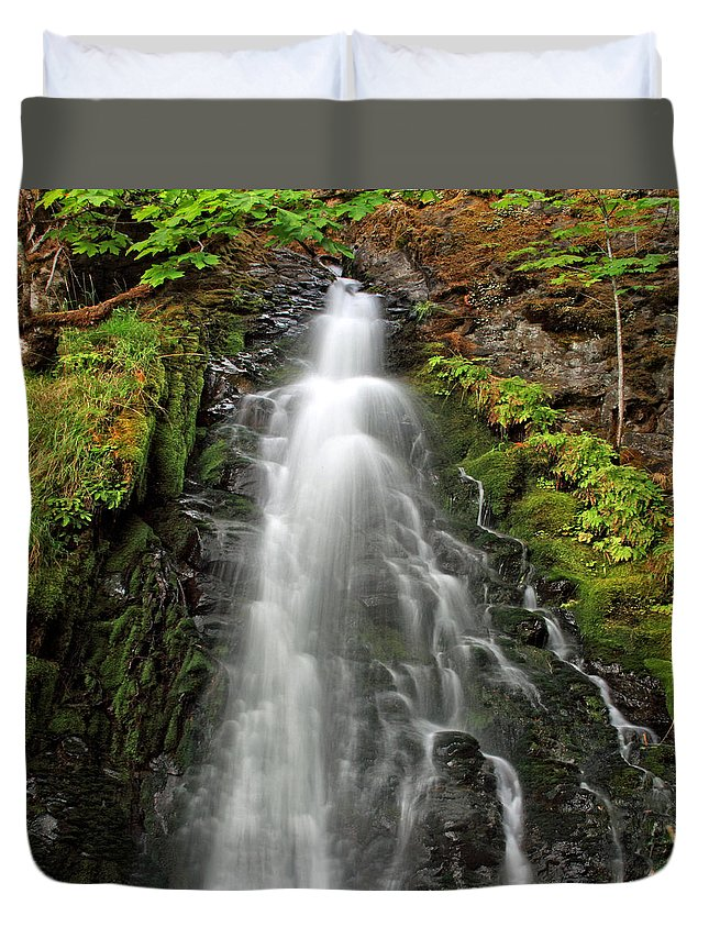 Clearwater Falls Duvet Cover featuring the photograph Fall Creek Falls 3 by Ingrid Smith-Johnsen