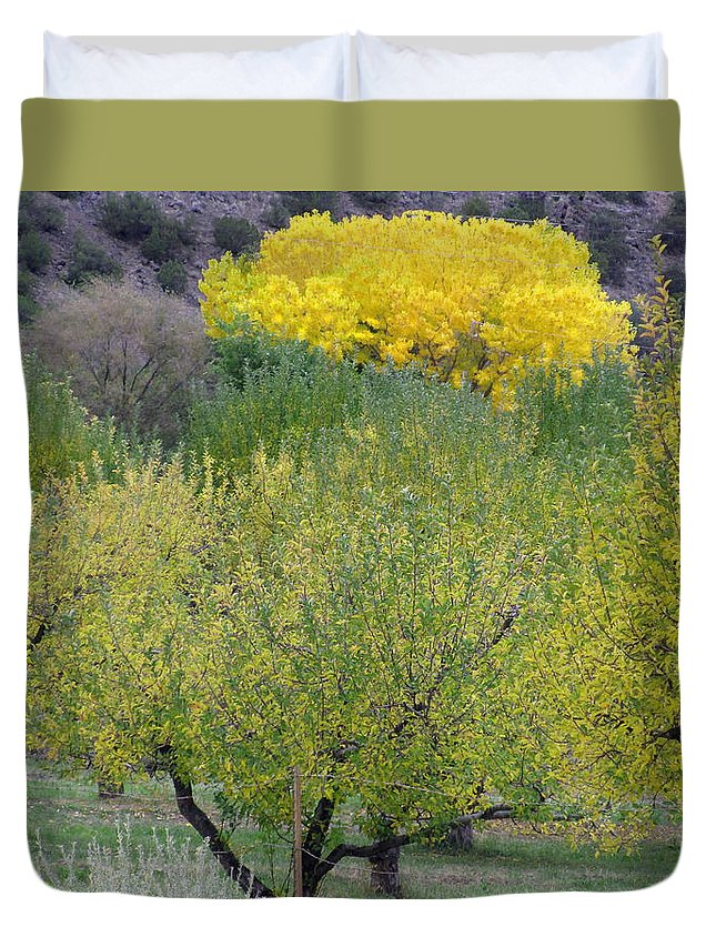 New Mexico Duvet Cover featuring the photograph Bright Yellow Leaves, Dixon New Mexico by Judithann O'Toole