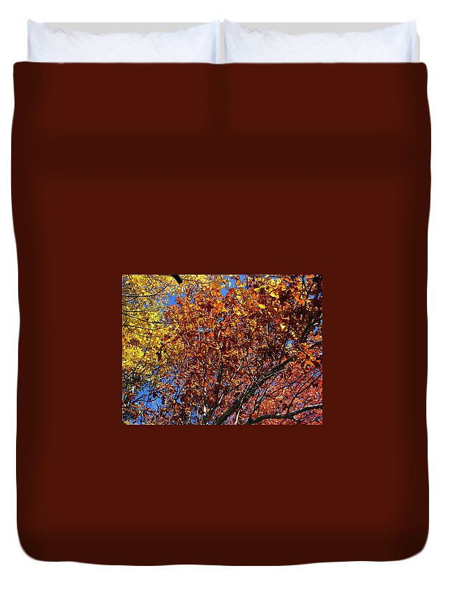 Fall Duvet Cover featuring the photograph Fall by Flavia Westerwelle