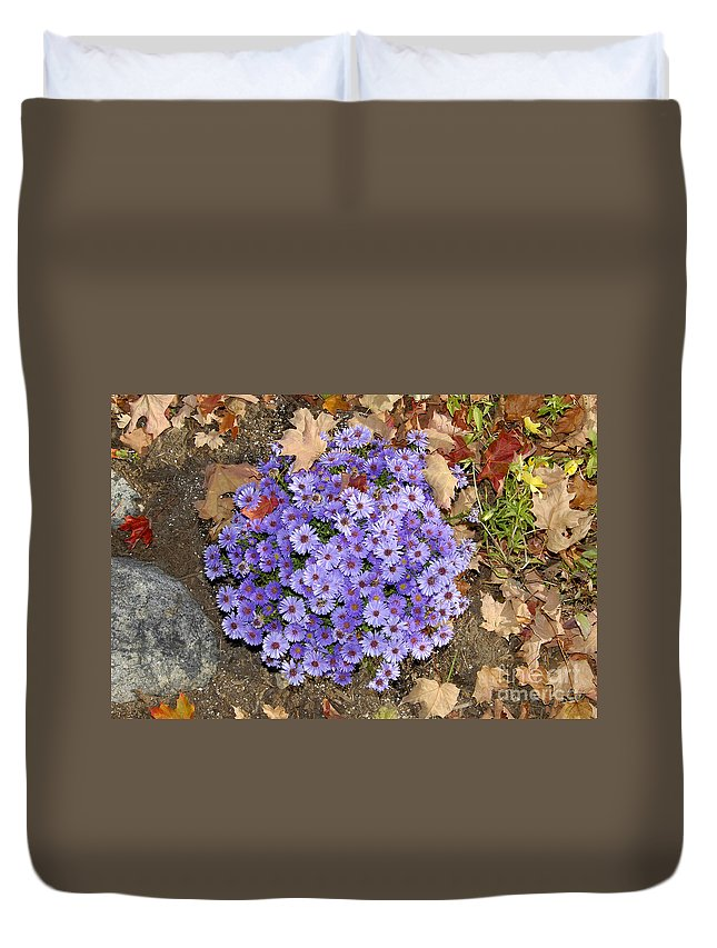 Fall Duvet Cover featuring the photograph Fall Flowers by David Lee Thompson
