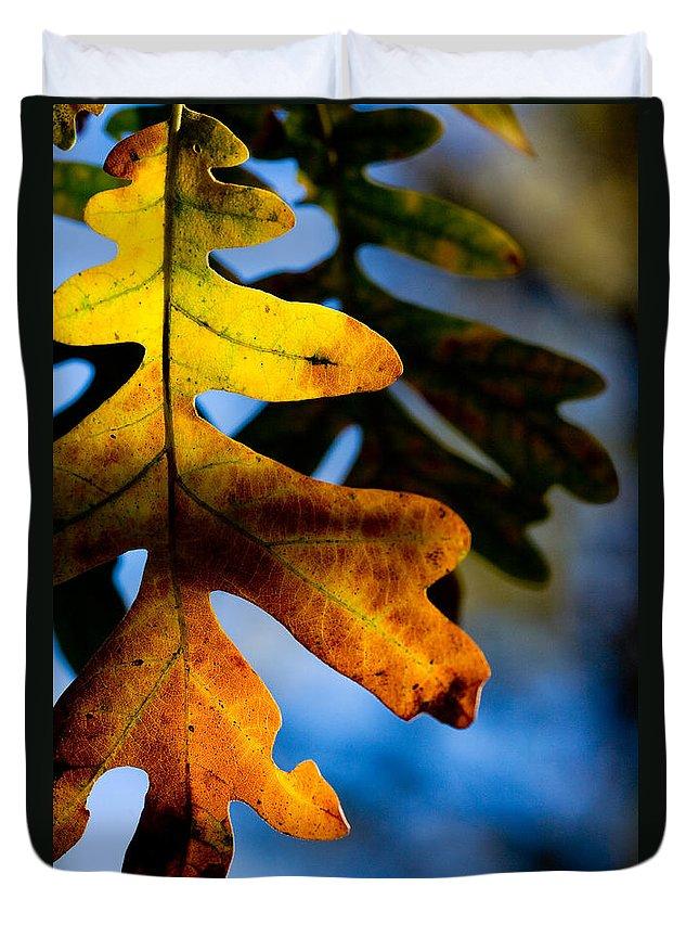 Leaf Duvet Cover featuring the photograph Fall Foliage Leaf Near Ruidoso Nm by Matt Suess