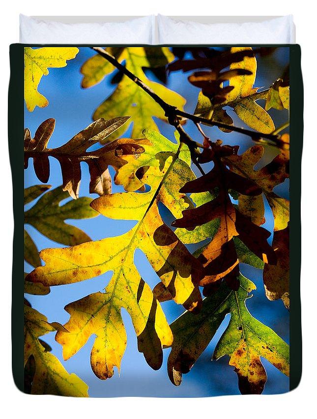 Fall Duvet Cover featuring the photograph Fall Foliage by Matt Suess