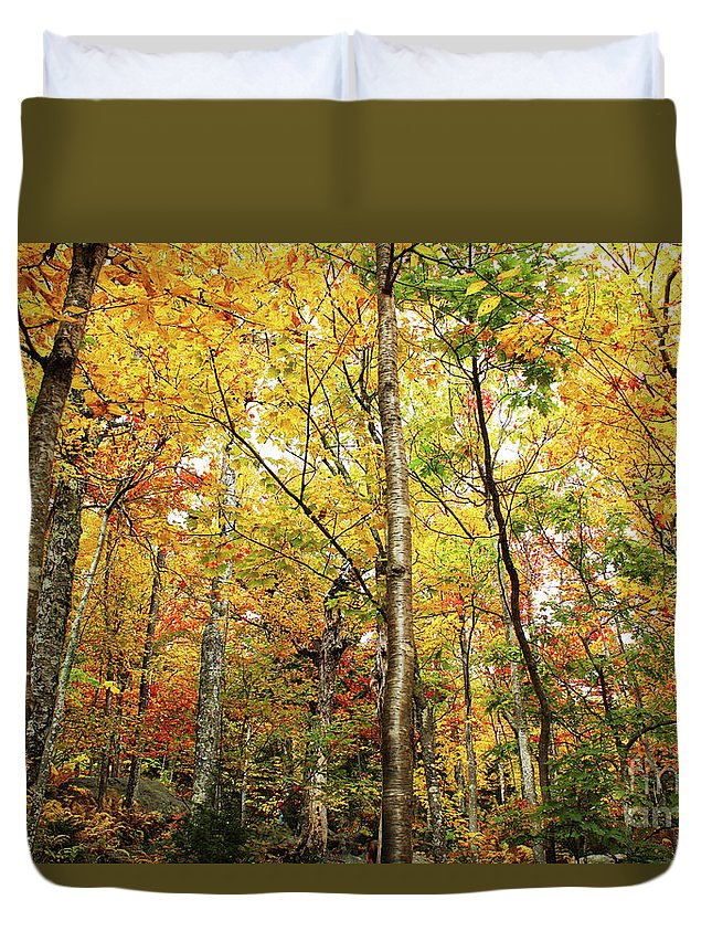 Fall Duvet Cover featuring the photograph Fall Foliage On The Hike Up Mount Monadnock New Hampshire by Maili Page