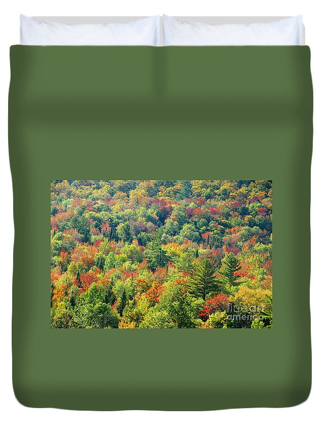 Adirondack Mountains Duvet Cover featuring the photograph Fall Forest by David Lee Thompson