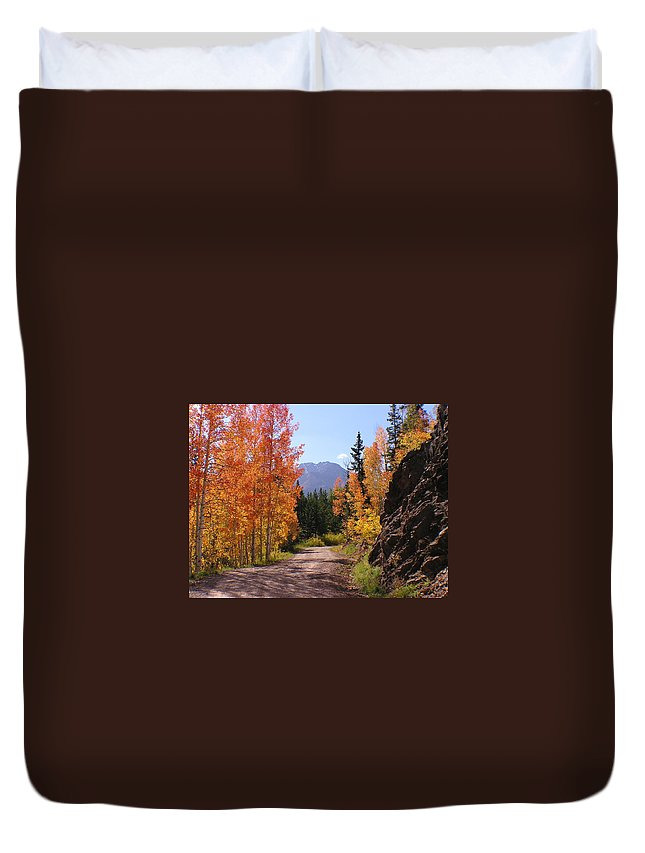 Trees Duvet Cover featuring the photograph Fall In Colorado by Carol Milisen
