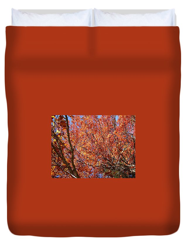 Fall Duvet Cover featuring the photograph Fall In The Blue Ridge Mountains by Flavia Westerwelle