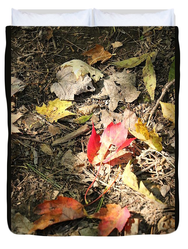 Leaves Duvet Cover featuring the photograph Fall Leaves by Christina McNee-Geiger
