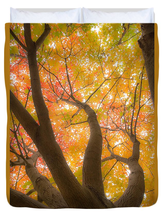 Autumn Duvet Cover featuring the photograph Fall Leaves by Pati Bobeck