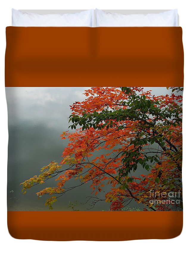 Trees Duvet Cover featuring the photograph Fall by Michelle Hastings
