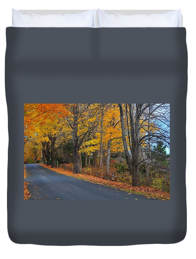 Cape Duvet Cover featuring the photograph Fall On The Cape by Catherine Reusch Daley