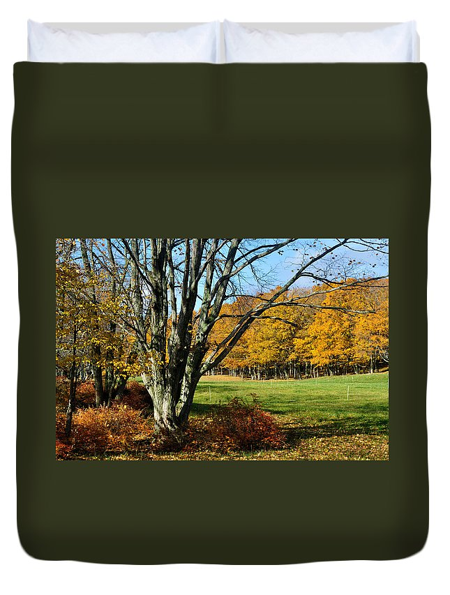 Trees Duvet Cover featuring the photograph Fall Pasture by Tim Nyberg