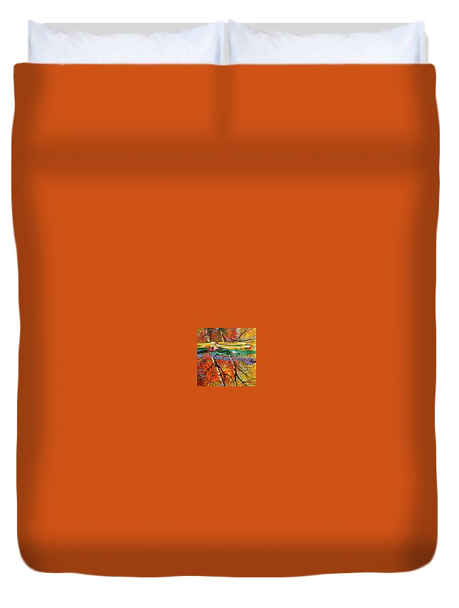 Garden Pond Duvet Cover featuring the painting Fall Reflections 2 by John Lautermilch