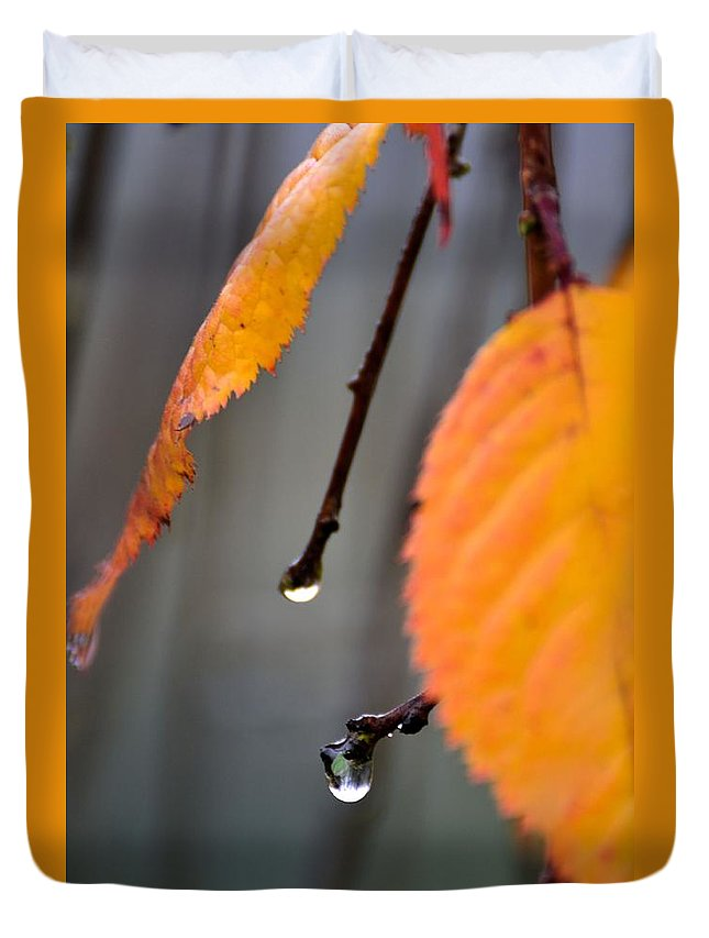 Leaves Duvet Cover featuring the photograph Fall by Robin White
