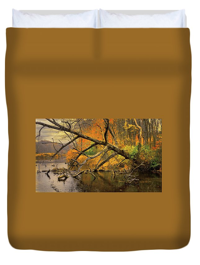 Autumn Duvet Cover featuring the photograph Fall Scene by Andre Vernacchia