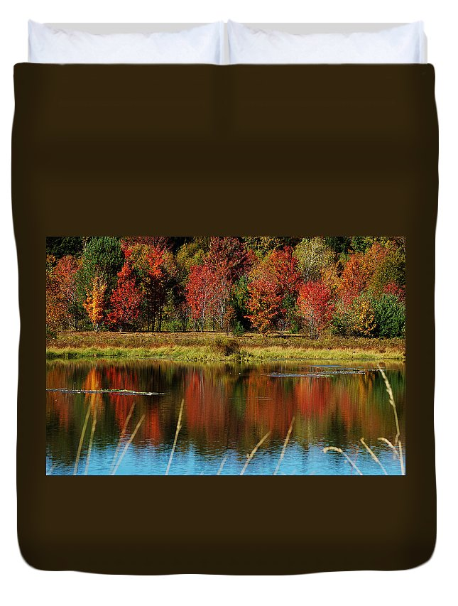 Autumn Duvet Cover featuring the photograph Fall Splendor by Linda Murphy