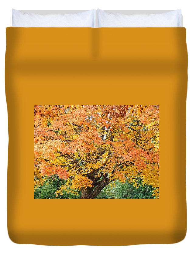 Autumn Duvet Cover featuring the photograph Fall Tree Art Print Autumn Leaves by Baslee Troutman