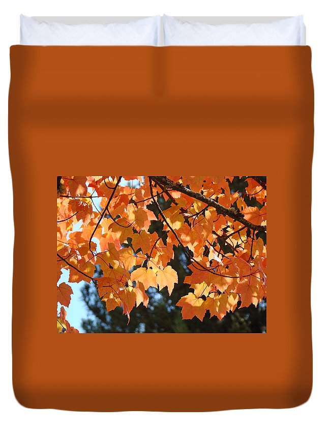Landscape Duvet Cover featuring the photograph Fall Tree Art Prints Orange Autumn Leaves Baslee Troutman by Baslee Troutman