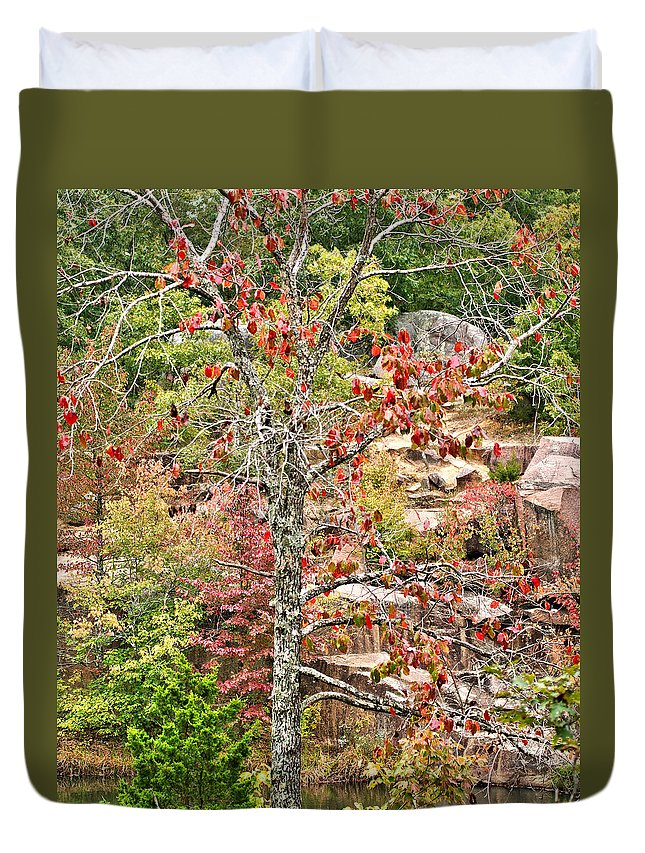 Fall Duvet Cover featuring the photograph Fall Tree With Intense Colors by Larry Jost
