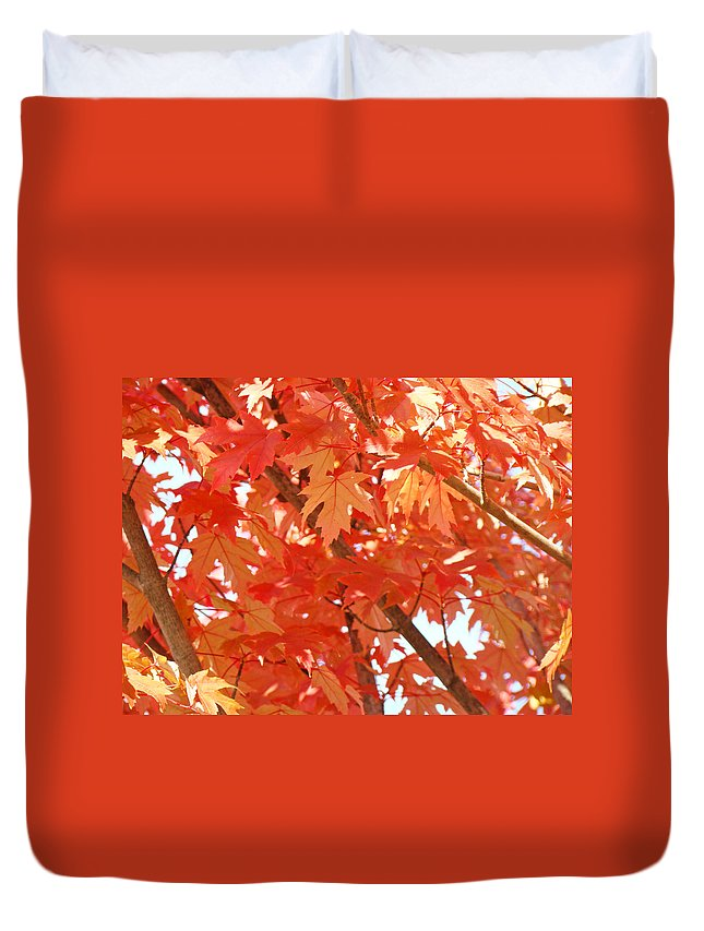Autumn Duvet Cover featuring the photograph Fall Trees Colorful Autumn Leaves Art Baslee Troutman by Baslee Troutman