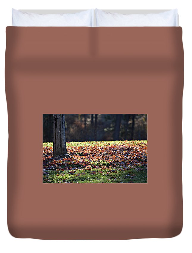 Duvet Cover featuring the photograph Fall by Valerie Zebroski