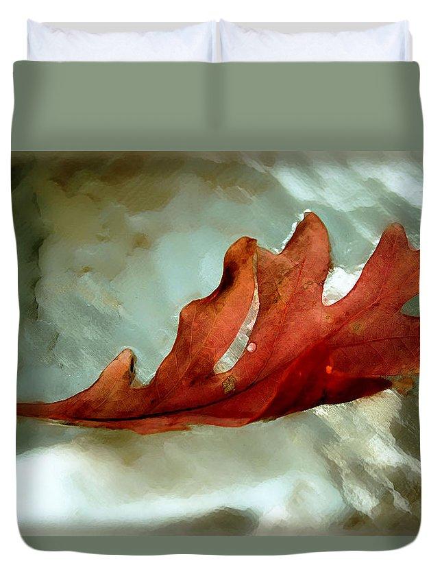 Nature Duvet Cover featuring the photograph Fallen Leaf by Linda Sannuti