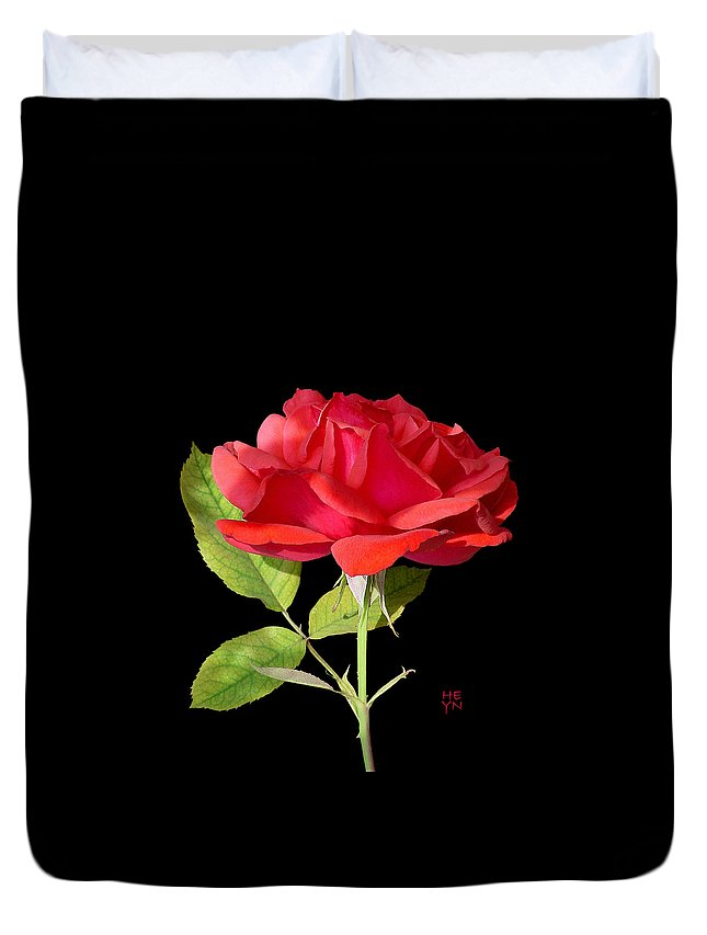 Cutout Duvet Cover featuring the photograph Fallen Red Rose Cutout by Shirley Heyn