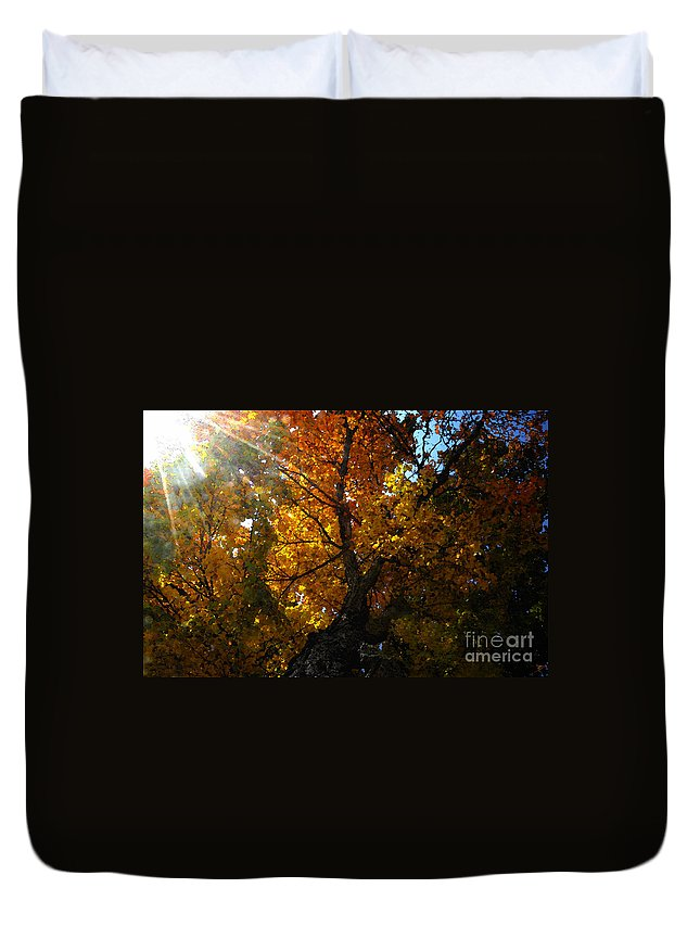 Art Duvet Cover featuring the painting Falling Light by David Lee Thompson
