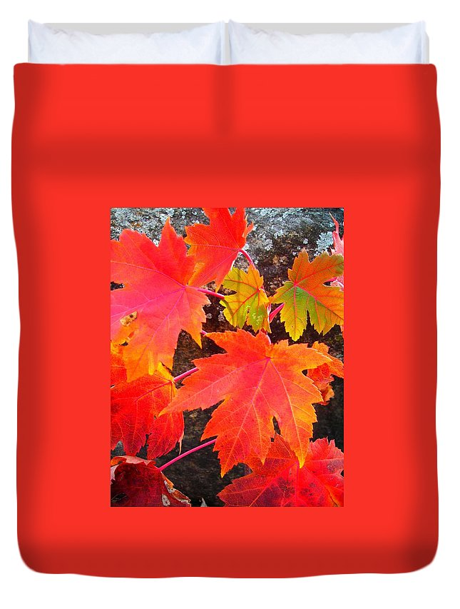 North America Duvet Cover featuring the photograph Falltime ... by Juergen Weiss