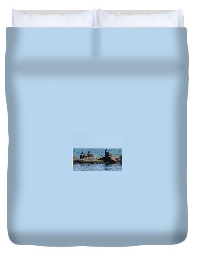 Birds Duvet Cover featuring the photograph Falmouth by Donna Walsh