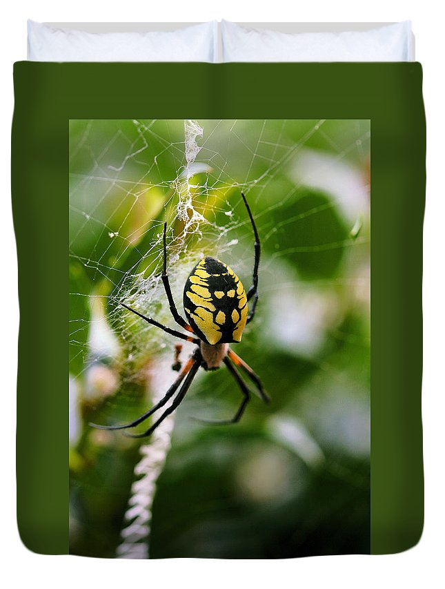 Argiope Duvet Cover featuring the photograph False Threats by Angela Rath