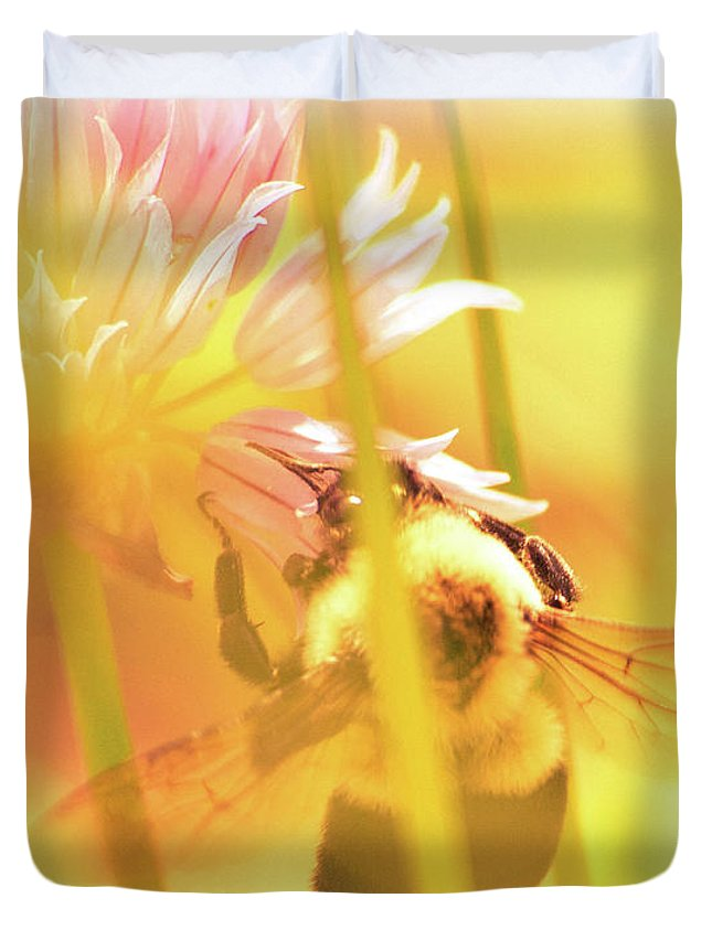 Bees Duvet Cover featuring the photograph Fame Is A Bee by Bob Orsillo